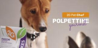 2G Pet Chef Polpettine Gourmet per cani