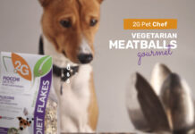 Gourmet vegetarian meatballs for dogs