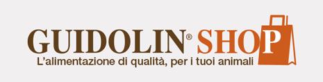 Gianni Guidolin Group